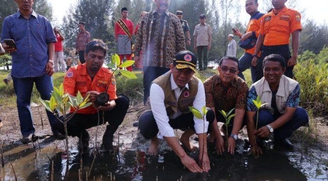 Doni Monardo Imbau Taman Vegetasi untuk Atasi Abrasi