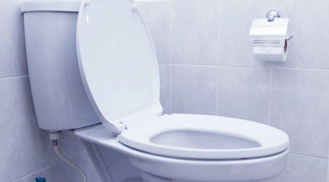 Tolok Ukur Pariwisata NTT Lewat Urusan Toilet